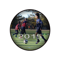 2015-gallery-button